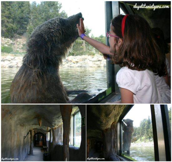 Cova de l'ós