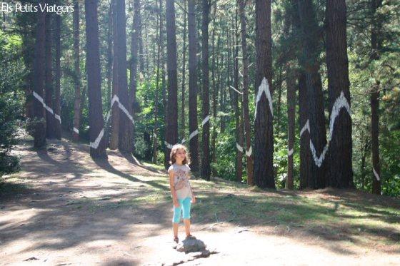 Aquí la nena està just on hi ha el senyal (al terra) de com posicionar-se per veure correctament el dibuix dels diferents troncs.