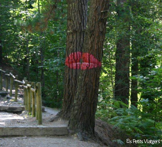 """El """"petó"""" que ens dona la benvinguda al Bosque de Oma"""